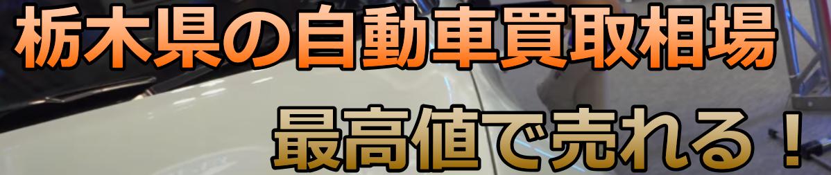 栃木県の自動車買取相場 最高値で売れる!