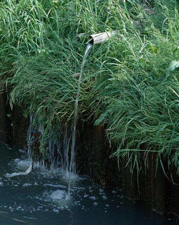 除草剤・使い方~おすすめ・安全・種類・効果・期間・時期・時間帯・撒き方・道具・草を刈ってから・まいたあと・庭・雨・液体・ラウンドアップ~