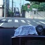ギャランフォルティス TRUST GREDDY Ti-cマフラー 車内から音のテスト