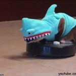 【かわいい!ワラタ!】サメのコスプレでルンバに乗る猫とアヒルとコスプレした犬!