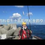 車載用釣れる五目サビキ釣り入門セット 15点フルセット