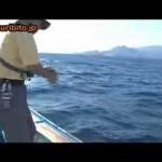 息を呑む水中映像! 鯛ラバ&インチク UNDER WATER