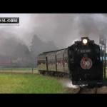 山形新幹線と蒸気機関車D51 498の同時発車 Shinkansen and Steam Locomotive run at once