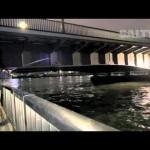 SALTY!2015年1月号【大野ゆうき】橋周りのシーバス