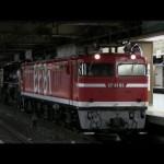 (岩手県 一関市へ)EF81 95 電気機関車+C61 20 蒸気機関車「がんばろう岩手号」