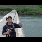 ブラックバスの釣り方 キャロライナリグ スプリットショットリグ (アクション)