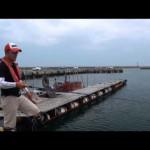 大爆釣中!「堤防タコが簡単に釣れる釣り方」。