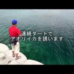 杉原正浩エギングタックル大活用術~実釣ドキュメント