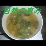 一人でキャンプ②~調理編~埼玉県神川町でキャンプ。|Survival in Japan②