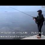 SALTY!2014年9月号 小沼正弥さん ワームのダート釣法