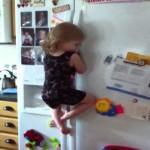 【かわいい!】お菓子が欲しくて冷蔵庫をひょいひょい登る女の子!