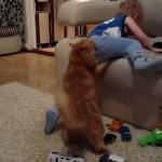 【許せにゃいニャ!】暴れる男の子に制裁を加える猫!