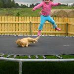 【かわいい!】猫と女の子が一緒にトランポリンで飛んだ結果・・・!
