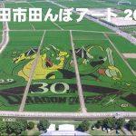【ギネス世界記録!】埼玉県行田市の田んぼアート!