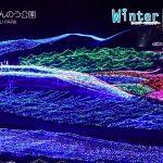 【美しいパノラマイルミネーション!国営讃岐まんのう公園】ウィンターファンタジー2016-2017!