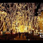 【仙台市青葉区】ケヤキ並木に光の葉がともるSENDAI光のページェント!