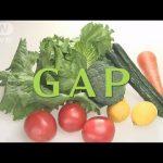 【東京オリンピックの食材基準!GAP認証】農業生産工程管理(Good Agricultural Practice)とは?
