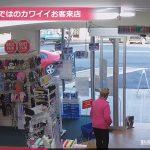 【オーストラリアのTocumwalのショッピングストリート】コアラが薬局に来店!