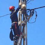 【猫の綱渡り!北アフリカのアルジェリア】電柱に上って降りられなくなったネコを救助!