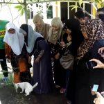 【やさしい猫!マレーシアのランカウイ島】亡くなった飼い主のお墓から離れるのを嫌がるネコ!