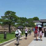【美味いニャ~!外国人観光客と猫だらけ】大阪城でおいしい水を飲むネコ!